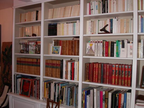 Amibois biblioth que peinte - Plan de bibliotheque en bois ...